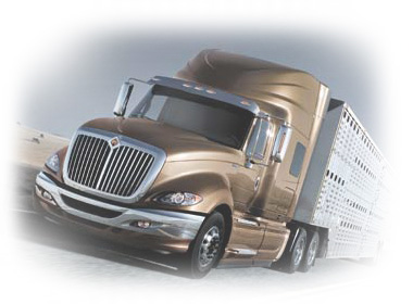 gold truck cattle shipping insurance